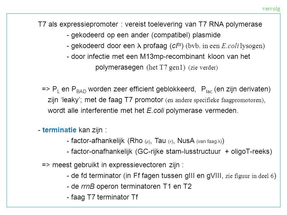 T7 als expressiepromoter : vereist toelevering van T7 RNA polymerase - gekodeerd op een ander (compatibel) plasmide - gekodeerd door een profaag (cI t