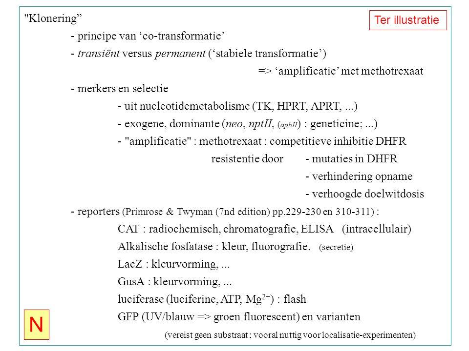 Klonering - principe van 'co-transformatie' - transiënt versus permanent ('stabiele transformatie') => 'amplificatie' met methotrexaat - merkers en selectie - uit nucleotidemetabolisme (TK, HPRT, APRT,...) - exogene, dominante (neo, nptII, ( aphII ) : geneticine;...) - amplificatie : methotrexaat : competitieve inhibitie DHFR resistentie door- mutaties in DHFR - verhindering opname - verhoogde doelwitdosis - reporters (Primrose & Twyman (7nd edition) pp.229-230 en 310-311) : CAT : radiochemisch, chromatografie, ELISA (intracellulair) Alkalische fosfatase : kleur, fluorografie.