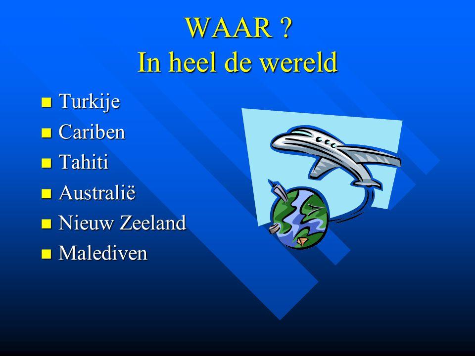 WAAR ? In heel de wereld Turkije Turkije Cariben Cariben Tahiti Tahiti Australië Australië Nieuw Zeeland Nieuw Zeeland Malediven Malediven