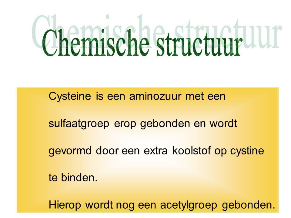 Cysteine is een aminozuur met een sulfaatgroep erop gebonden en wordt gevormd door een extra koolstof op cystine te binden. Hierop wordt nog een acety