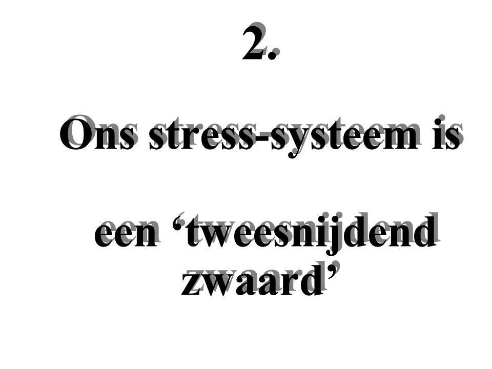 2. Ons stress-systeem is een 'tweesnijdend zwaard'