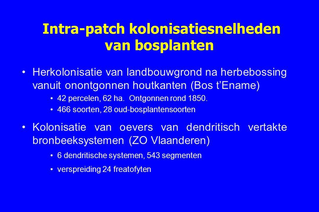 Intra-patch kolonisatiesnelheden van bosplanten Herkolonisatie van landbouwgrond na herbebossing vanuit onontgonnen houtkanten (Bos t'Ename) 42 percel