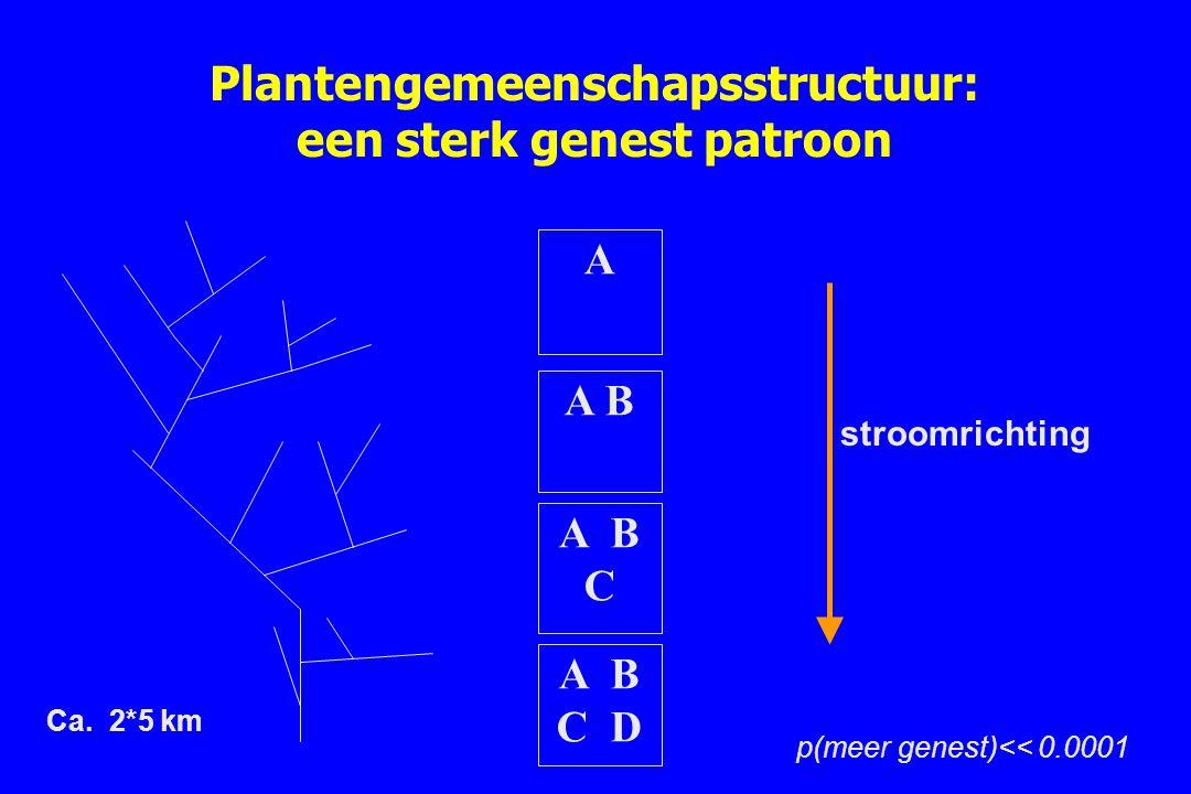 Plantengemeenschapsstructuur: een sterk genest patroon A B C D A B C A B A stroomrichting p(meer genest)<< 0.0001 Ca. 2*5 km