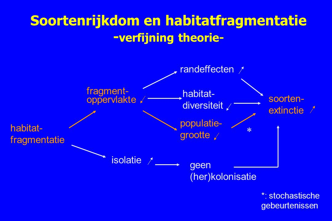 Soortenrijkdom en habitatfragmentatie - verfijning theorie- habitat- fragmentatie fragment- oppervlakte randeffecten populatie- grootte soorten- extin
