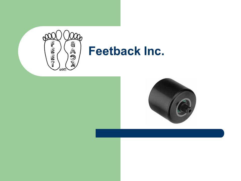 1. Voorstelling Feetback Inc. 2. Productgroepen 3. Productievestigingen 4. Project Team