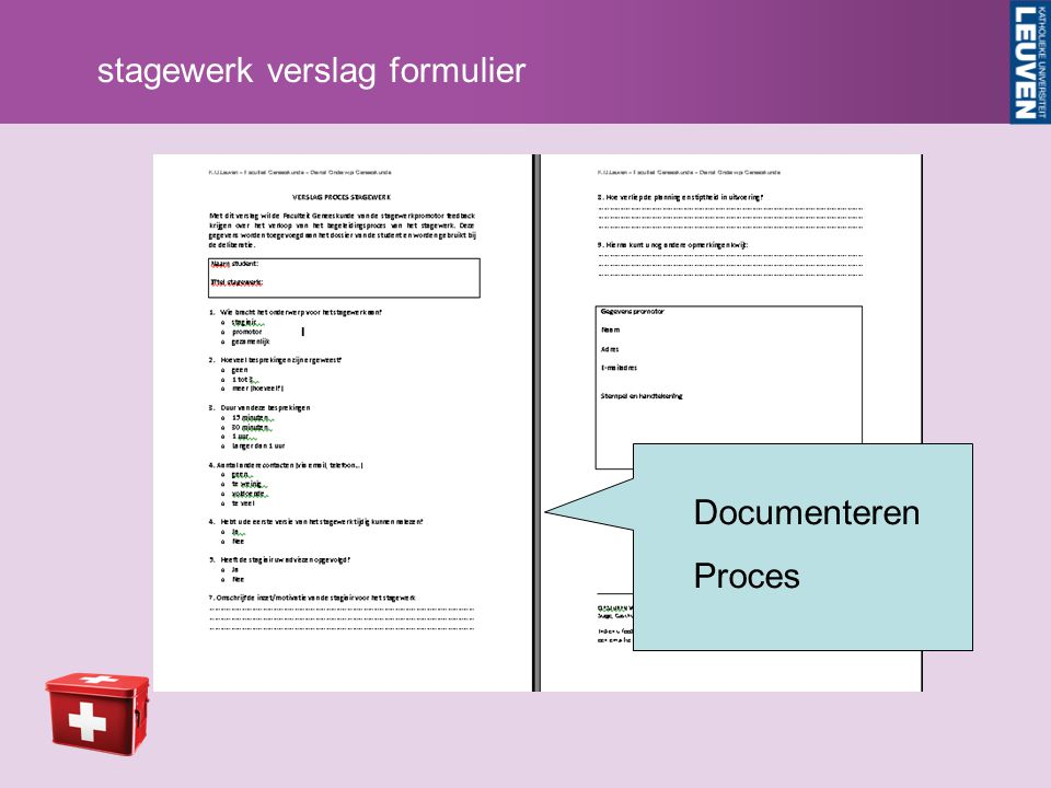 stagewerk verslag formulier Documenteren Proces
