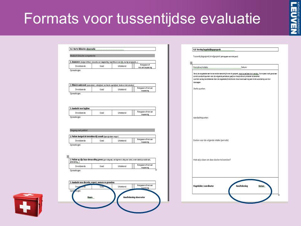 Formats voor tussentijdse evaluatie