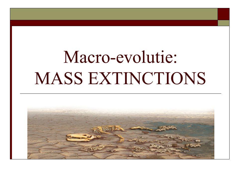 Macro-evolutie: MASS EXTINCTIONS