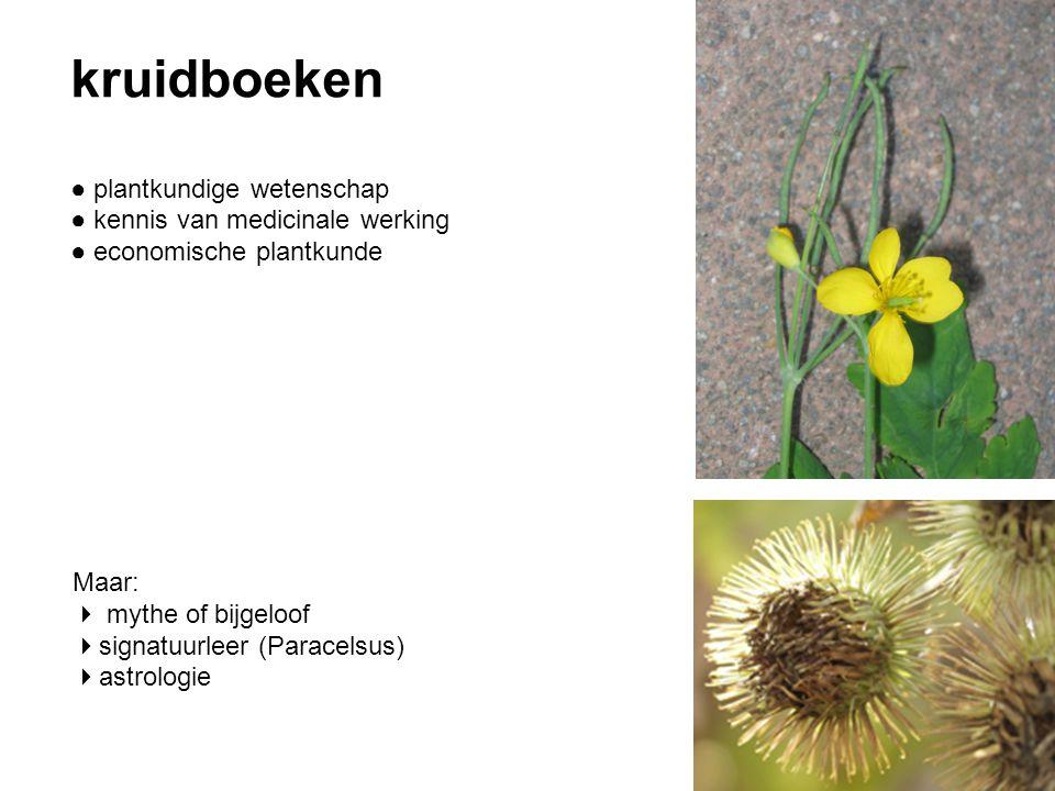 kruidboeken ● plantkundige wetenschap ● kennis van medicinale werking ● economische plantkunde Maar:  mythe of bijgeloof  signatuurleer (Paracelsus)  astrologie