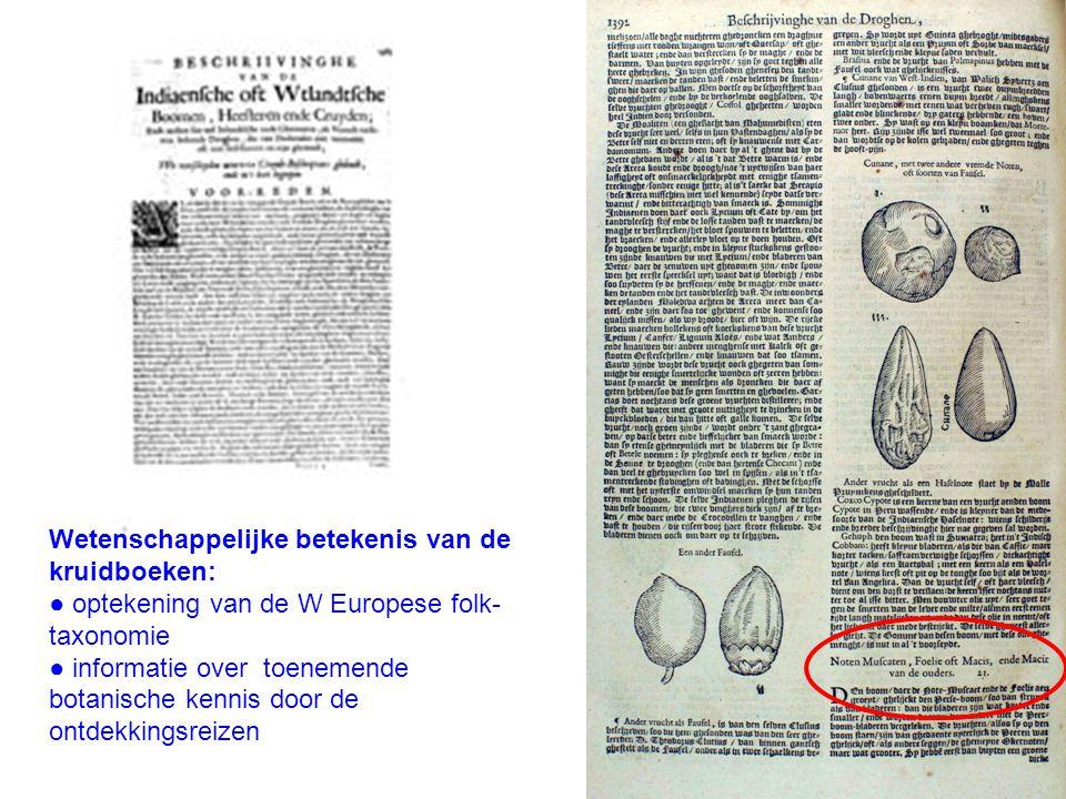 Wetenschappelijke betekenis van de kruidboeken: ● optekening van de W Europese folk- taxonomie ● informatie over toenemende botanische kennis door de ontdekkingsreizen
