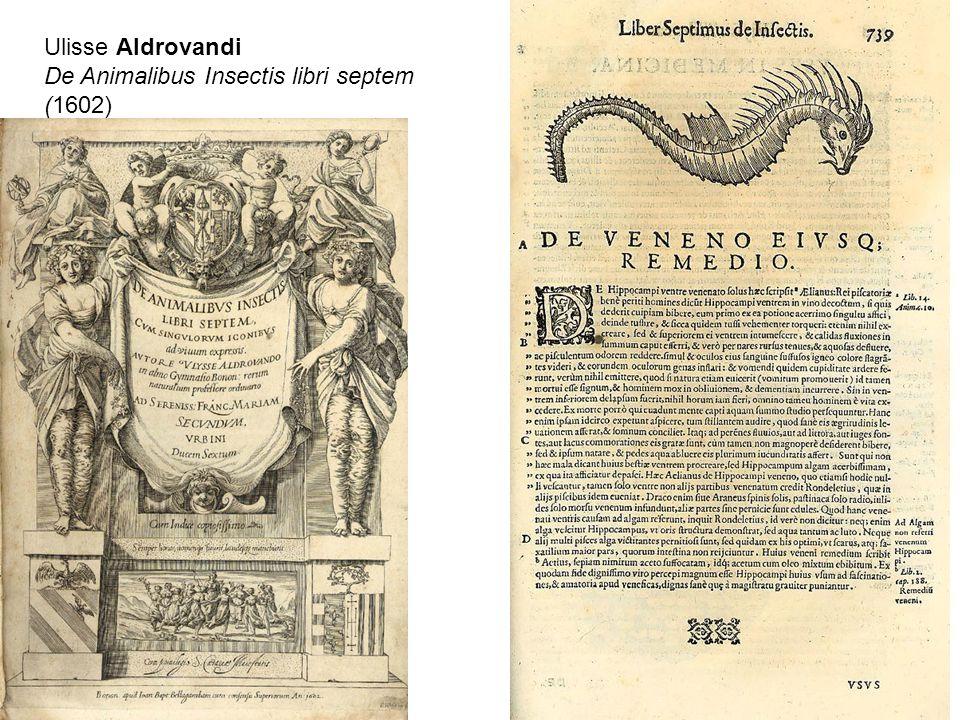 Ulisse Aldrovandi De Animalibus Insectis libri septem (1602)