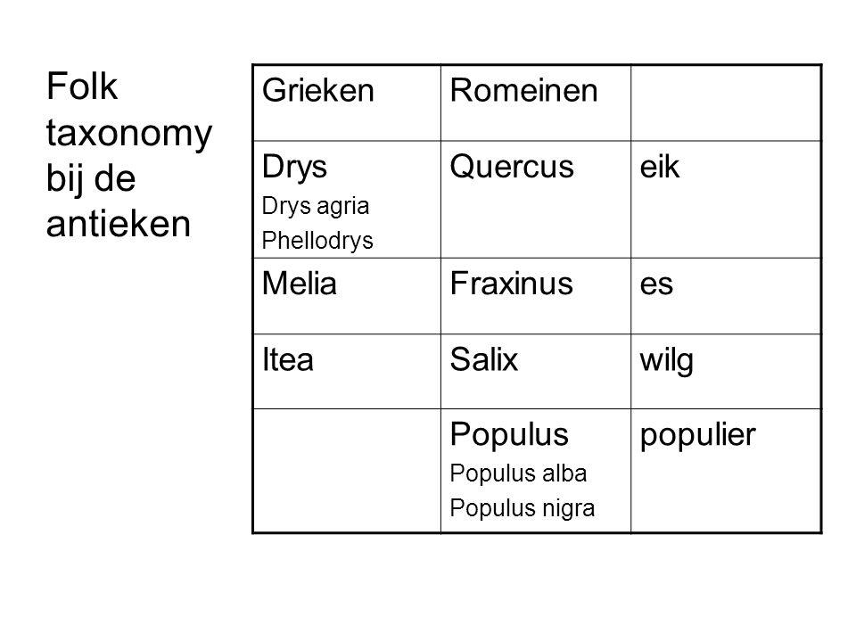 Folk taxonomy bij de antieken GriekenRomeinen Drys Drys agria Phellodrys Quercuseik MeliaFraxinuses IteaSalixwilg Populus Populus alba Populus nigra populier