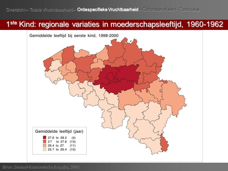 3 de Kind: cohorten 1936-1980 versus cohorte 1931-1935 Bron: Sociaal-Economische Enquête, 2001.