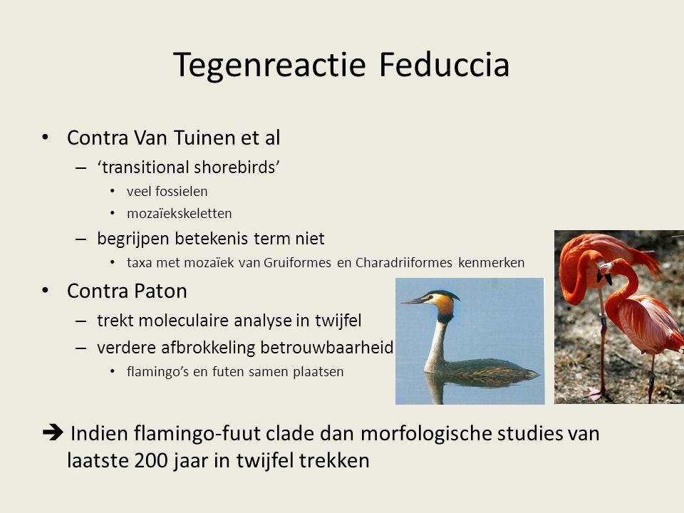 Tegenreactie Feduccia Contra Van Tuinen et al – 'transitional shorebirds' veel fossielen mozaïekskeletten – begrijpen betekenis term niet taxa met moz