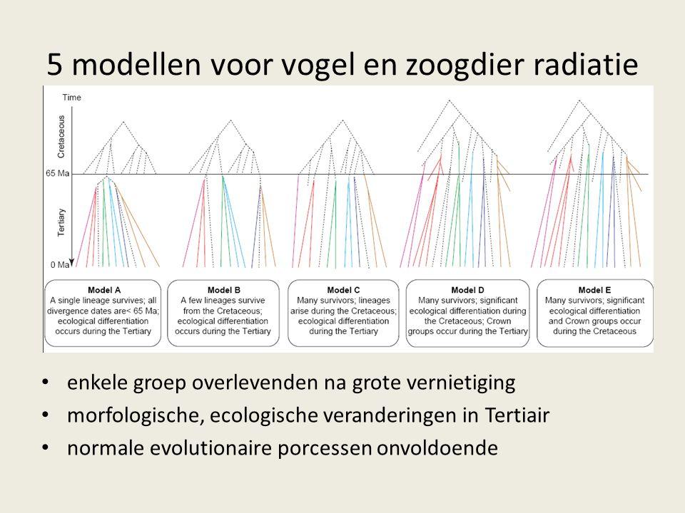 5 modellen voor vogel en zoogdier radiatie enkele groep overlevenden na grote vernietiging morfologische, ecologische veranderingen in Tertiair normale evolutionaire porcessen onvoldoende