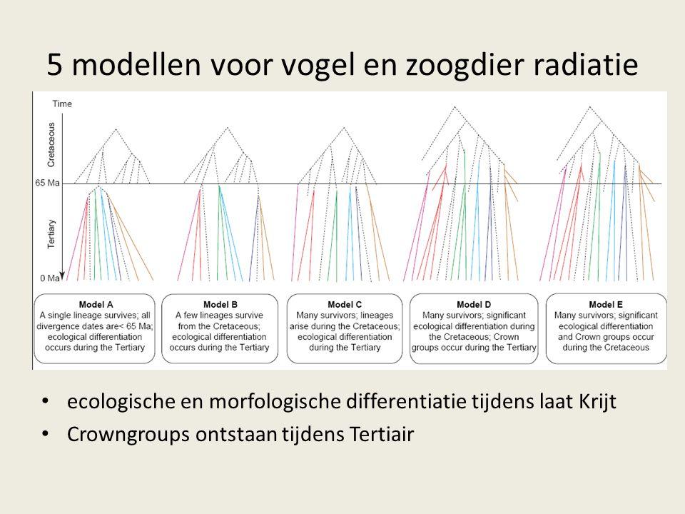 5 modellen voor vogel en zoogdier radiatie ecologische en morfologische differentiatie tijdens laat Krijt Crowngroups ontstaan tijdens Tertiair