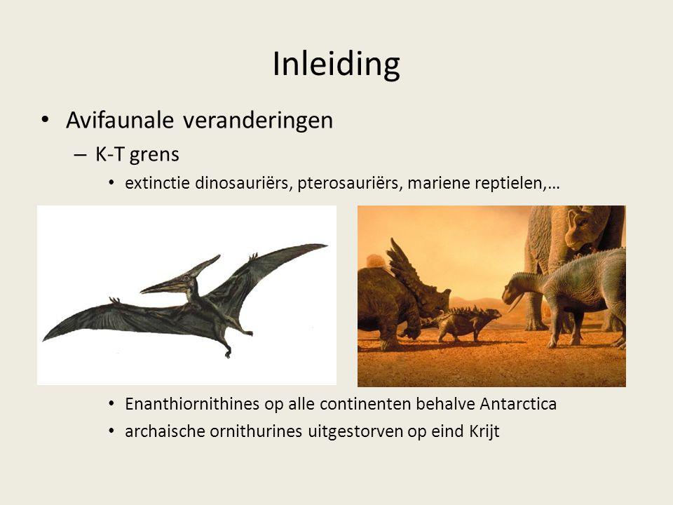 Inleiding Avifaunale veranderingen – K-T grens extinctie dinosauriërs, pterosauriërs, mariene reptielen,… Enanthiornithines op alle continenten behalve Antarctica archaische ornithurines uitgestorven op eind Krijt