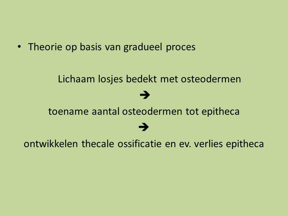 Theorie op basis van gradueel proces Lichaam losjes bedekt met osteodermen  toename aantal osteodermen tot epitheca  ontwikkelen thecale ossificatie