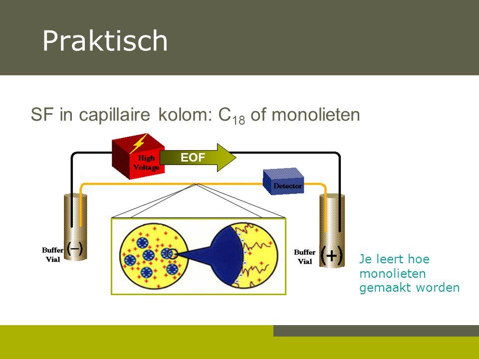 Praktisch SF in capillaire kolom: C 18 of monolieten Je leert hoe monolieten gemaakt worden EOF