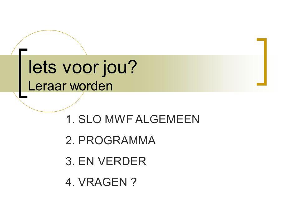B.Vakdidactiek (VDD) Vakdidactiek MWF (4 sp):  Teamteaching : S.