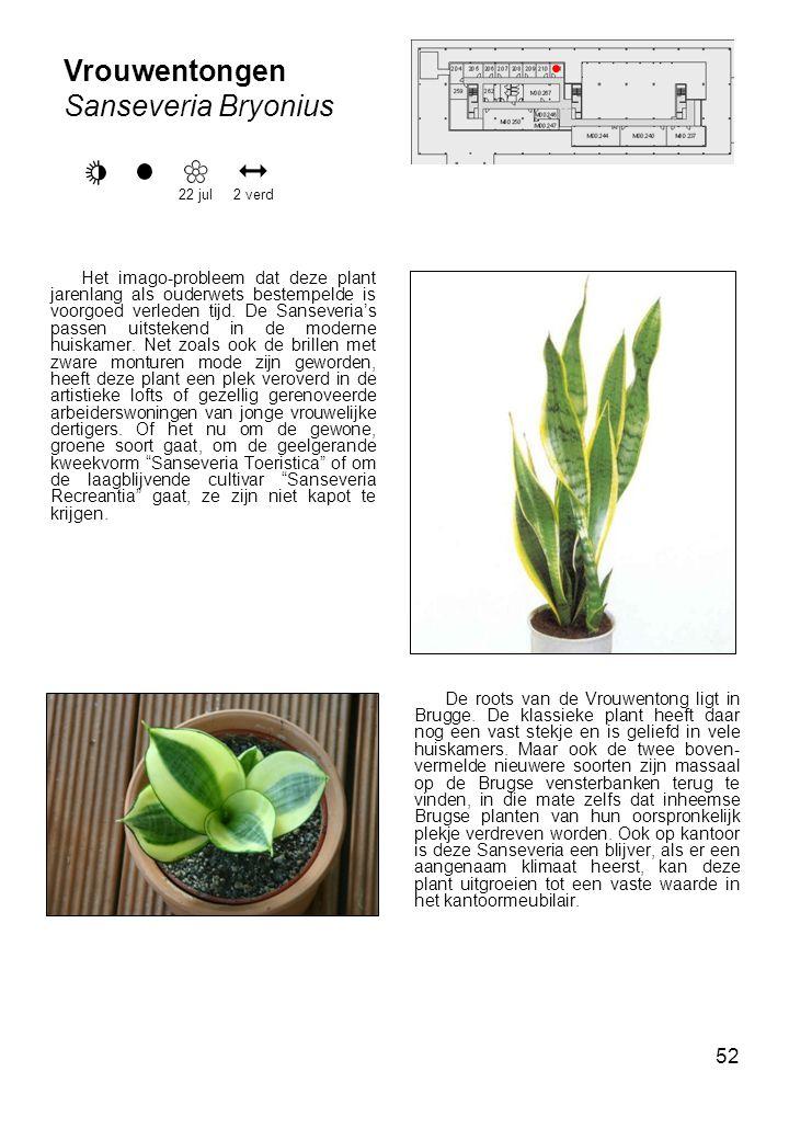 52 Vrouwentongen Sanseveria Bryonius 22 jul Het imago-probleem dat deze plant jarenlang als ouderwets bestempelde is voorgoed verleden tijd.