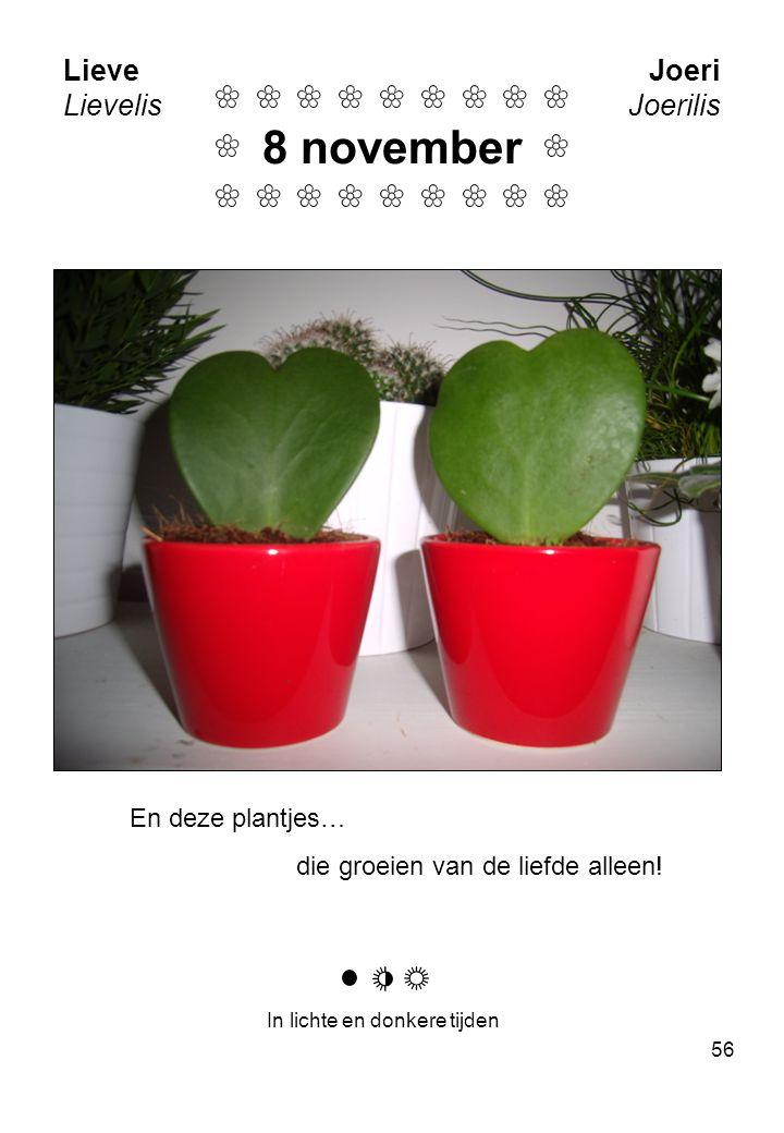56 Lieve Lievelis Joeri Joerilis En deze plantjes… die groeien van de liefde alleen.