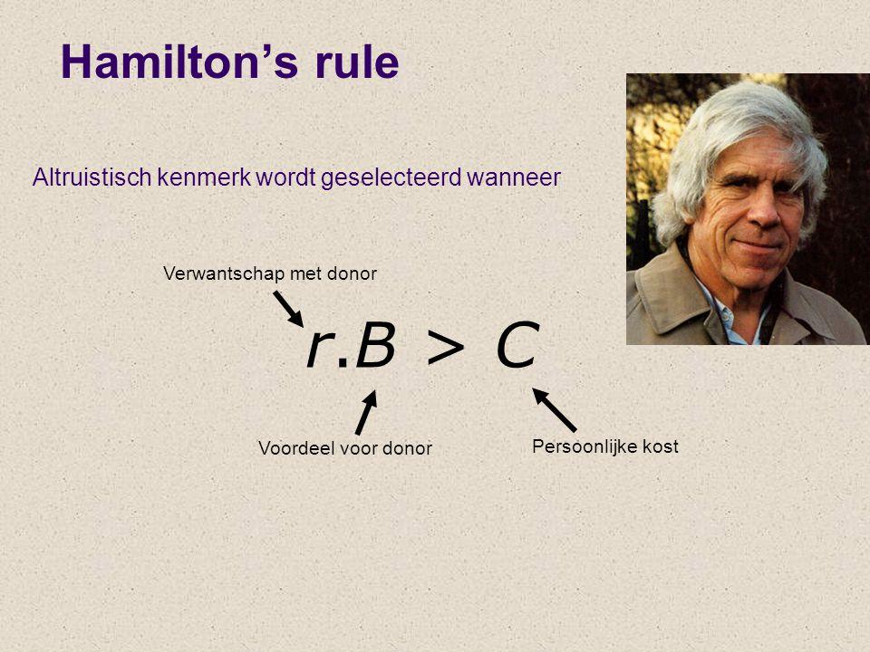 Hamilton's rule r.B > C Verwantschap met donor Voordeel voor donor Persoonlijke kost Altruistisch kenmerk wordt geselecteerd wanneer