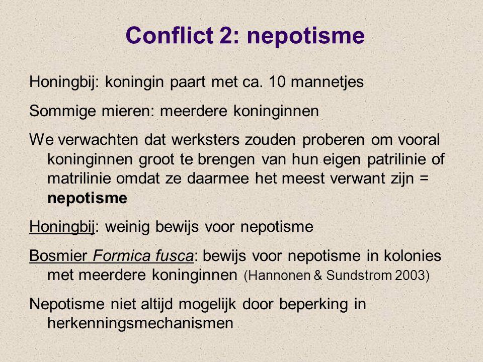 Conflict 2: nepotisme Honingbij: koningin paart met ca. 10 mannetjes Sommige mieren: meerdere koninginnen We verwachten dat werksters zouden proberen