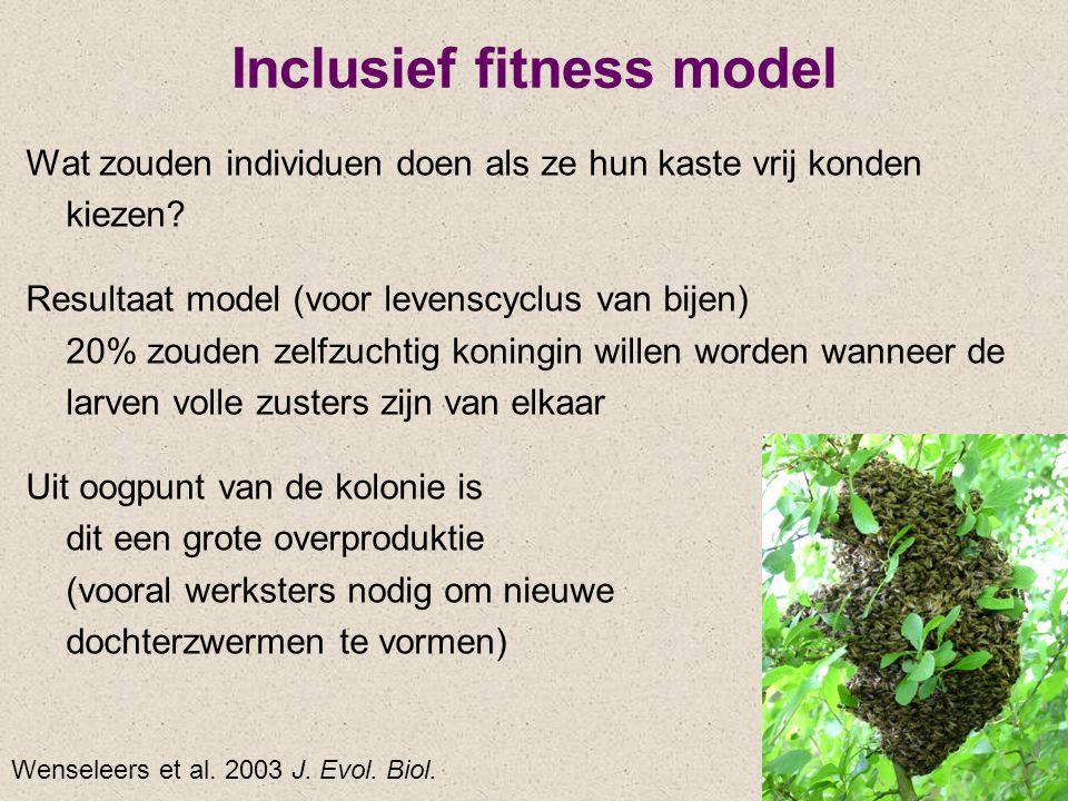 Inclusief fitness model Wat zouden individuen doen als ze hun kaste vrij konden kiezen? Resultaat model (voor levenscyclus van bijen) 20% zouden zelfz