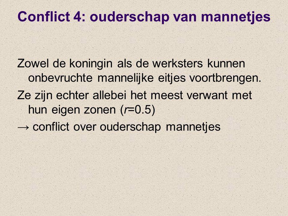 Conflict 4: ouderschap van mannetjes Zowel de koningin als de werksters kunnen onbevruchte mannelijke eitjes voortbrengen. Ze zijn echter allebei het