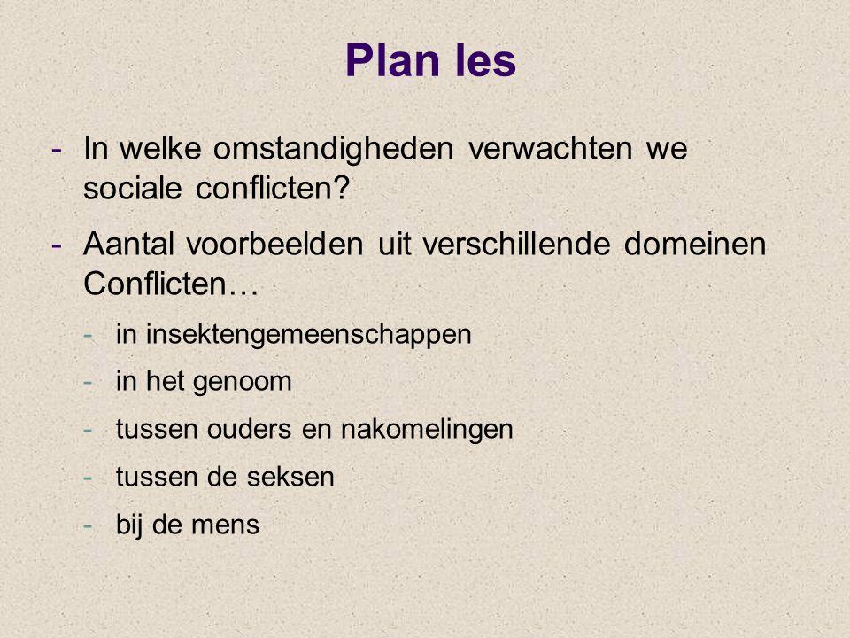 Plan les -In welke omstandigheden verwachten we sociale conflicten? -Aantal voorbeelden uit verschillende domeinen Conflicten… -in insektengemeenschap