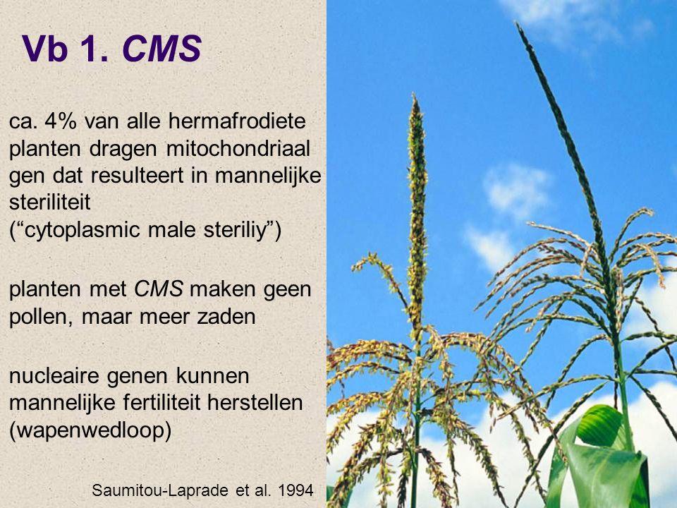 "Vb 1. CMS ca. 4% van alle hermafrodiete planten dragen mitochondriaal gen dat resulteert in mannelijke steriliteit (""cytoplasmic male steriliy"") plant"