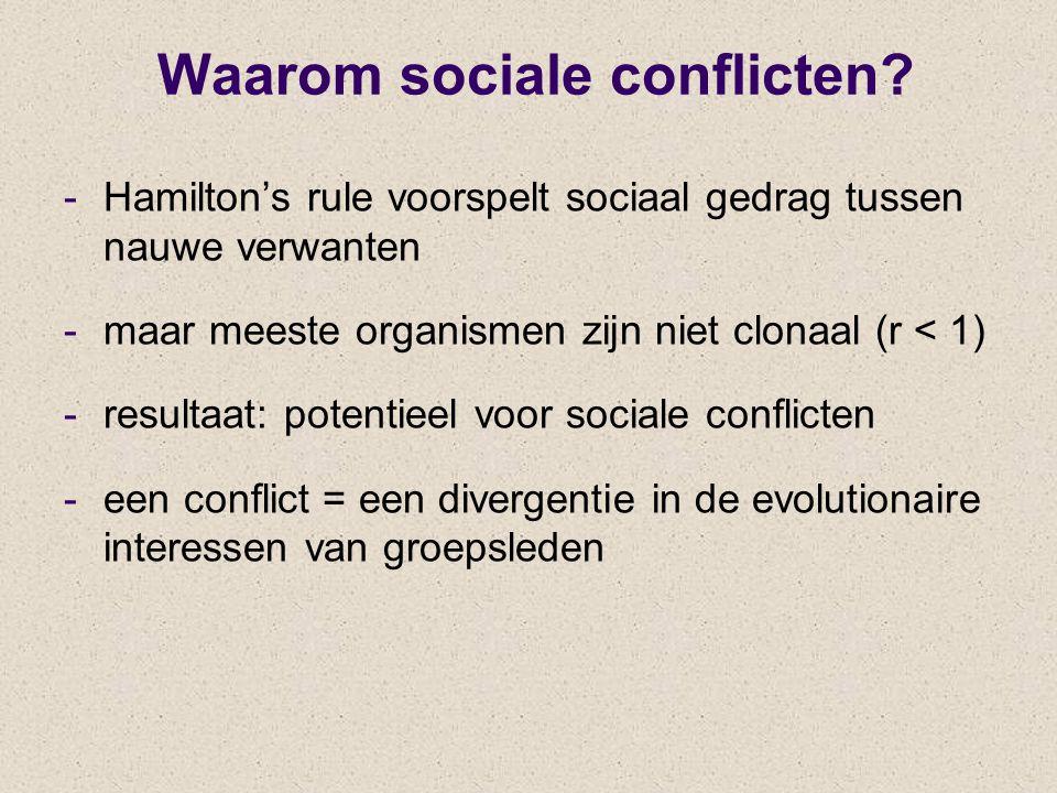 Waarom sociale conflicten? -Hamilton's rule voorspelt sociaal gedrag tussen nauwe verwanten -maar meeste organismen zijn niet clonaal (r < 1) -resulta