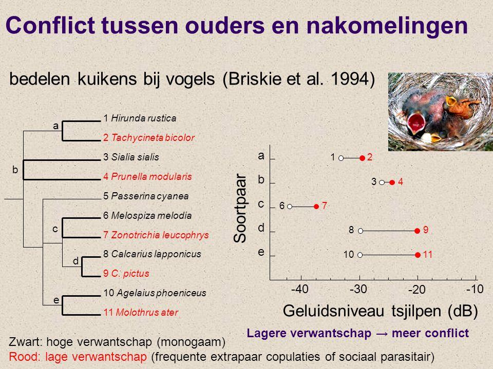 a b c d e 1 Hirunda rustica 2 Tachycineta bicolor 3 Sialia sialis 4 Prunella modularis 5 Passerina cyanea 6 Melospiza melodia 7 Zonotrichia leucophrys 8 Calcarius lapponicus 9 C.