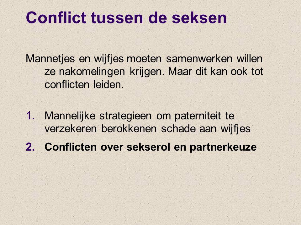 Conflict tussen de seksen Mannetjes en wijfjes moeten samenwerken willen ze nakomelingen krijgen. Maar dit kan ook tot conflicten leiden. 1. Mannelijk
