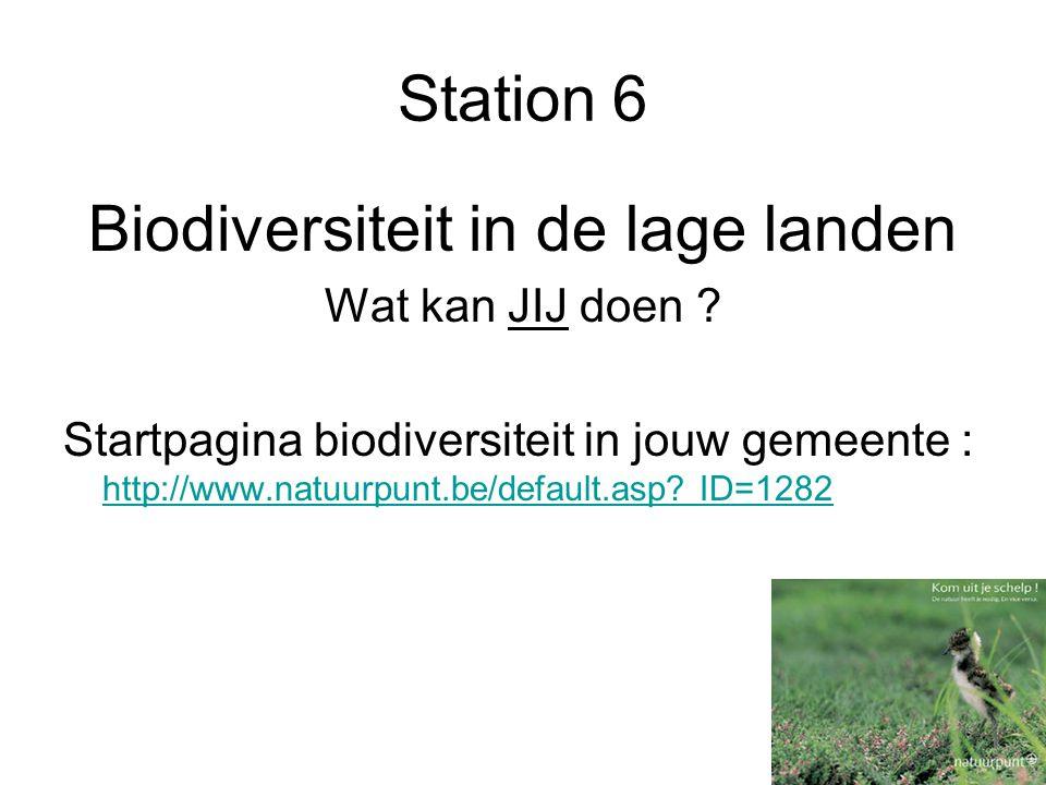 Station 6 Biodiversiteit in de lage landen Wat kan JIJ doen .