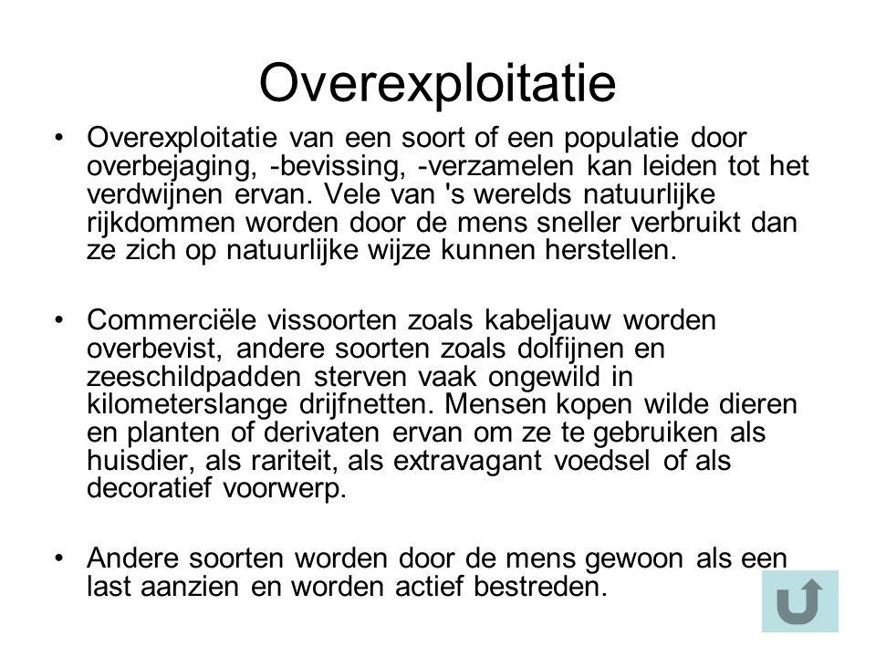 Overexploitatie Overexploitatie van een soort of een populatie door overbejaging, -bevissing, -verzamelen kan leiden tot het verdwijnen ervan.