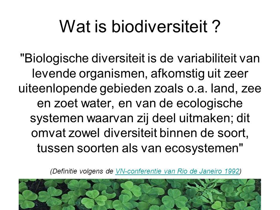 Wat is biodiversiteit .