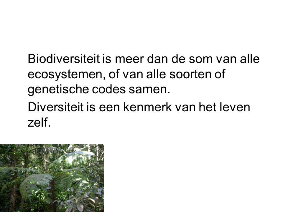 Biodiversiteit is meer dan de som van alle ecosystemen, of van alle soorten of genetische codes samen.