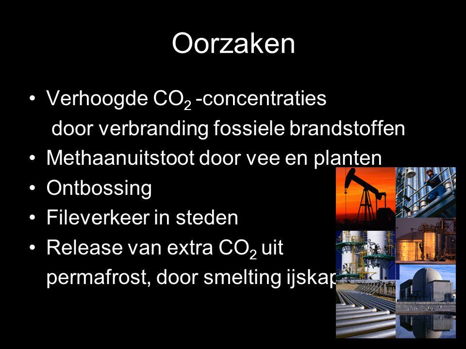 Oorzaken Verhoogde CO 2 -concentraties door verbranding fossiele brandstoffen Methaanuitstoot door vee en planten Ontbossing Fileverkeer in steden Rel