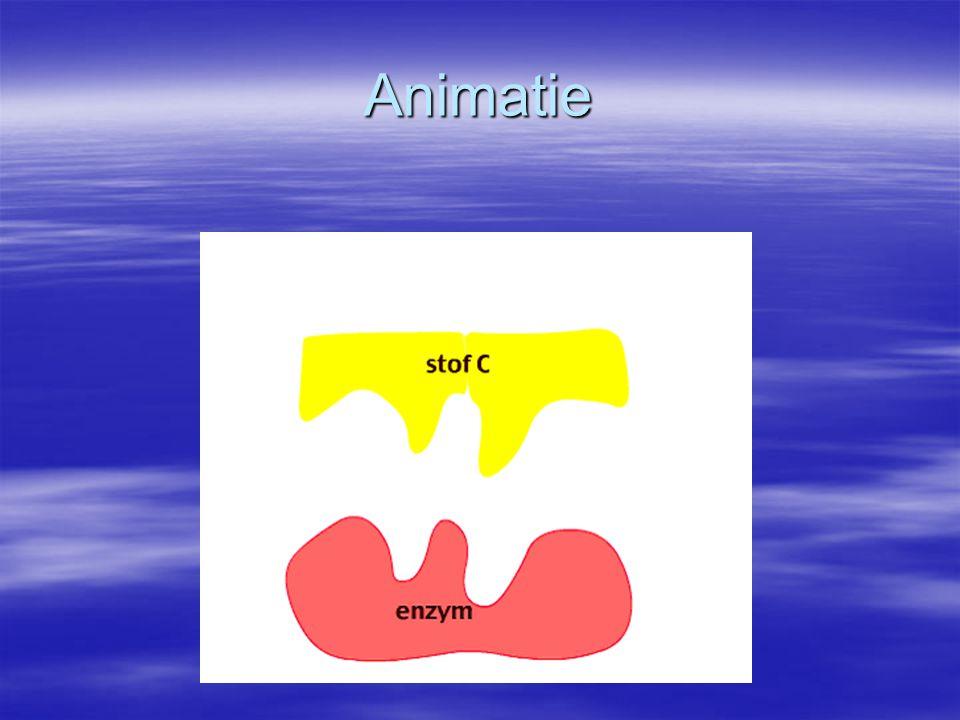 Biologisch belang van enzymen  Zonder enzymen geen leven op kamertemperatuur mogelijk  Metabolisme = enzymatische reacties samen = enzymatische reacties samen => efficiënter verloop van processen => efficiënter verloop van processen in de cellen in de cellen