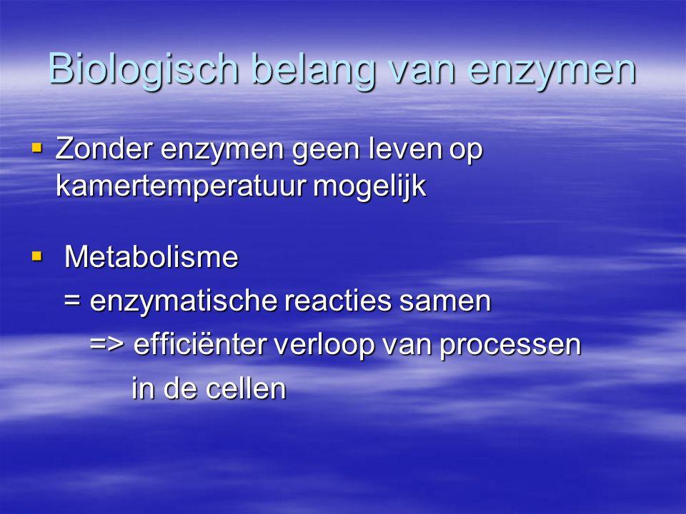 Biologisch belang van enzymen  Zonder enzymen geen leven op kamertemperatuur mogelijk  Metabolisme = enzymatische reacties samen = enzymatische reac