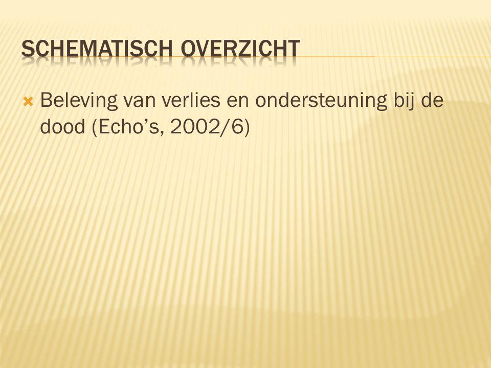  Beleving van verlies en ondersteuning bij de dood (Echo's, 2002/6)
