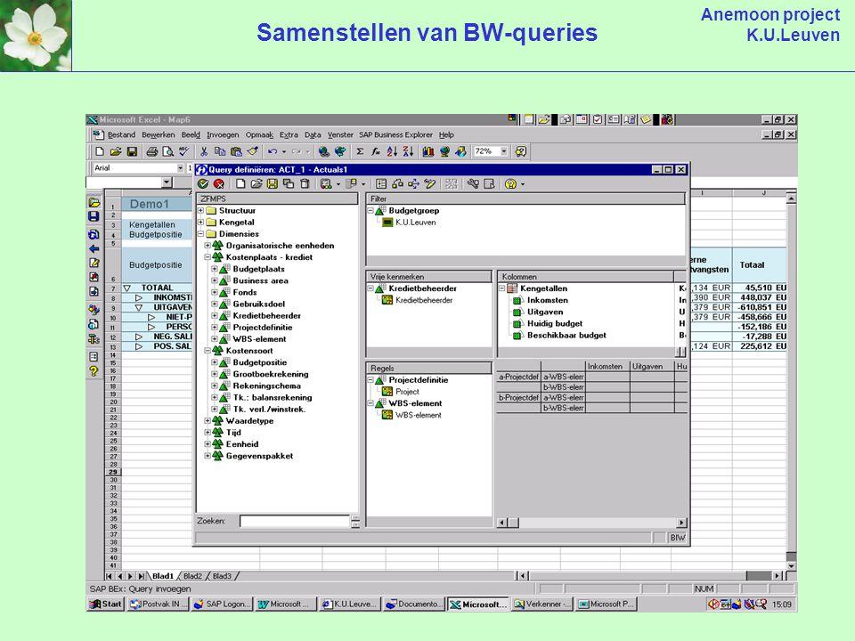 Anemoon project K.U.Leuven Samenstellen van BW-queries