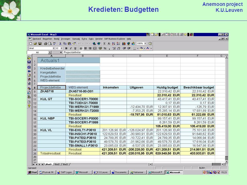 Anemoon project K.U.Leuven Kredieten: Budgetten