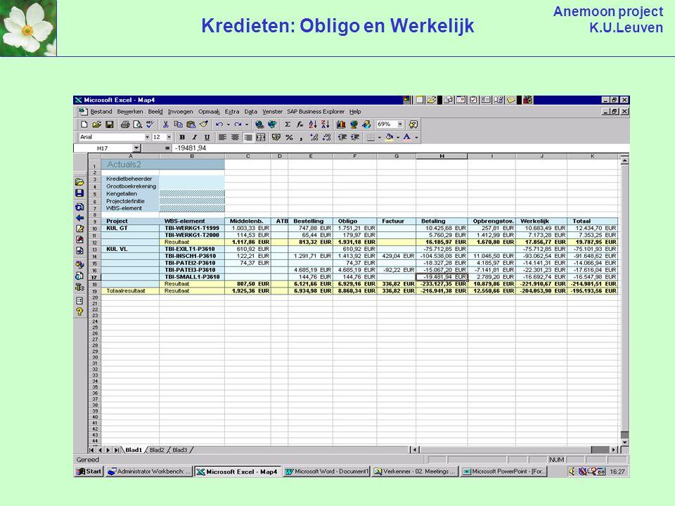 Anemoon project K.U.Leuven Kredieten: Obligo en Werkelijk