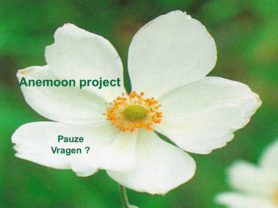 Anemoon project K.U.Leuven Anemoon project Pauze Vragen