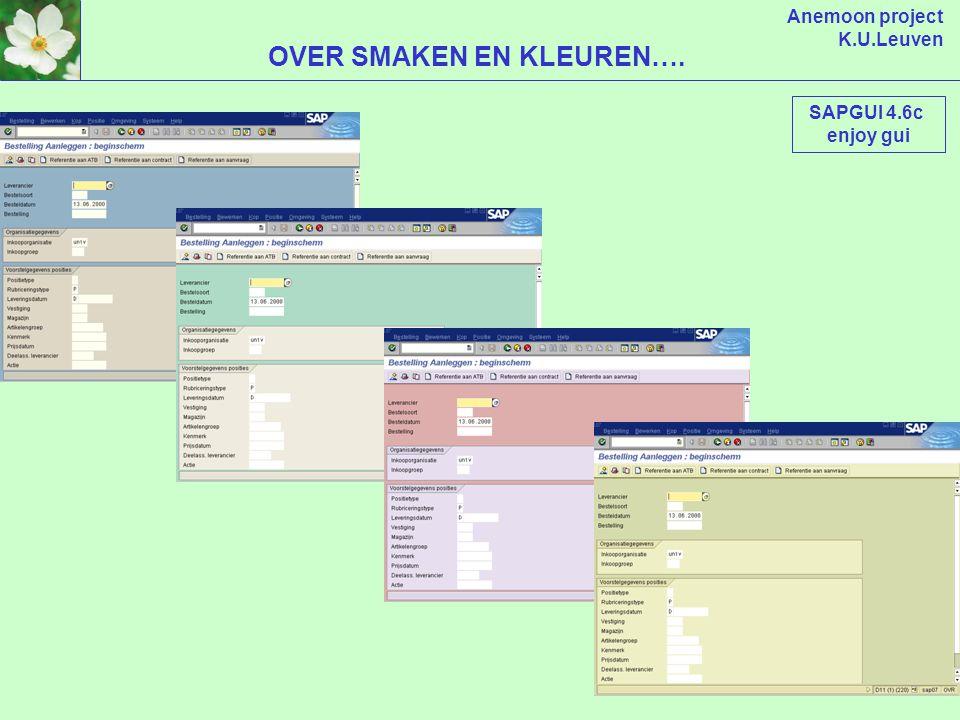 Anemoon project K.U.Leuven VERANDERING ZOEKHULP SAPGUI 4.6c enjoy gui