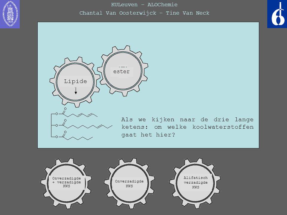 KULeuven – ALOChemie Chantal Van Oosterwijck – Tine Van Neck Als we kijken naar de drie lange ketens: om welke koolwaterstoffen gaat het hier? ester O