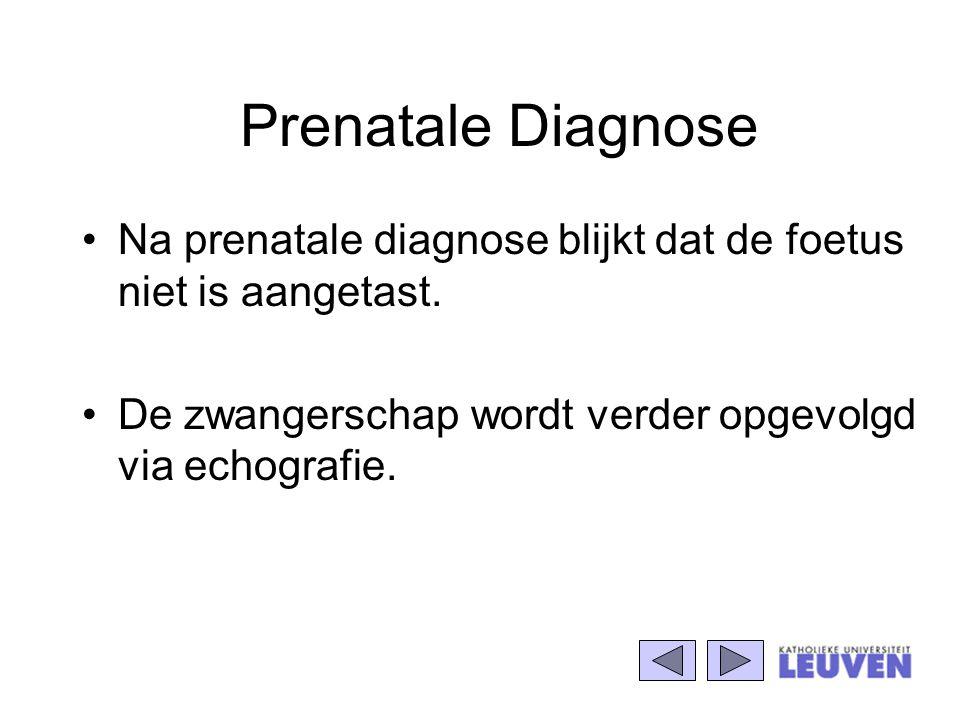 Prenatale Diagnose Na prenatale diagnose blijkt dat de foetus niet is aangetast. De zwangerschap wordt verder opgevolgd via echografie.